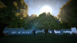 Sparse Forest Minecraft Project