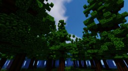 Large Forest Minecraft