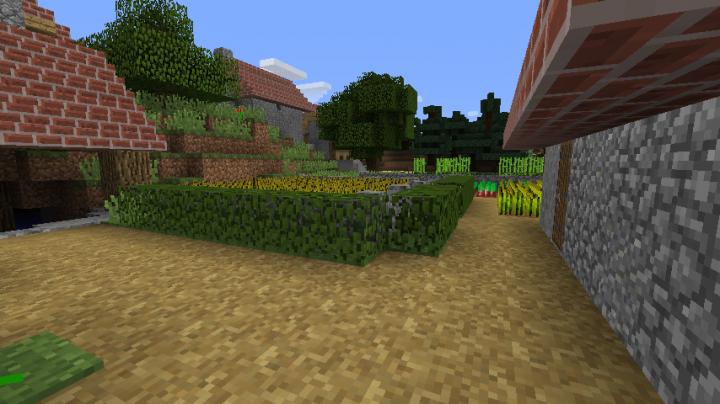 Inner village