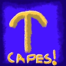 Paradiscal's Capes Galore Minecraft Blog Post