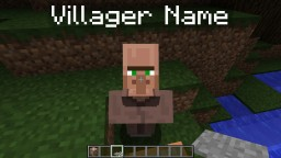 Custom Villager Shop Minecraft