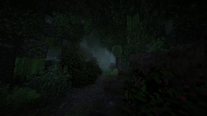 A dark path through the forest