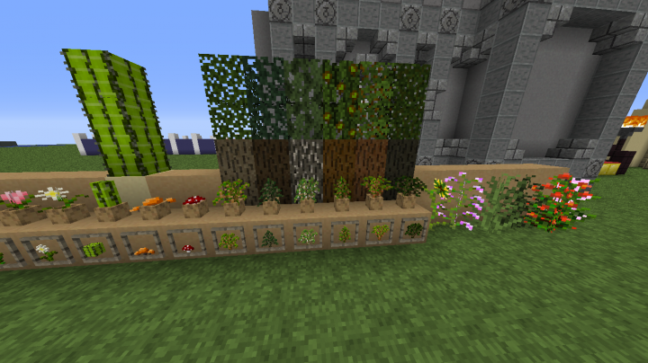 Closer look at tree types