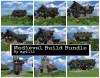 Medieval Build Bundle #WeAreConquest Minecraft Project