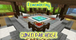 Remembering Cubed Paradise >> Server Owner Experience