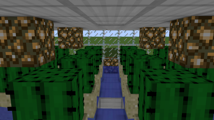 how to make an automatic cactus farm