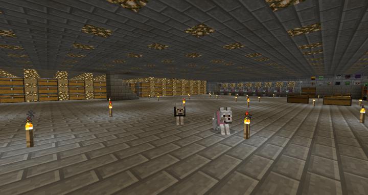 1st floor of hidden basement storage