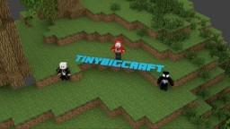 TinyBigCraft Minecraft