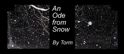 An Ode from Snow; i.e. The Existential Crisis of Winter's Child