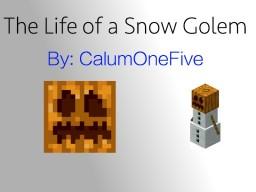 Life of a Snow Golem - Contest