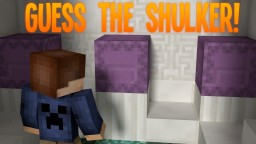 GUESS THE SHULKER! Minecraft Project