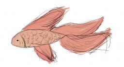 Fish Minecraft