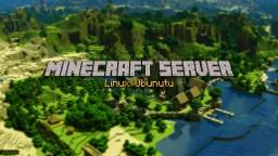 How to setup a Server on Linux Ubunutu