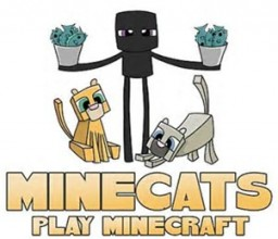 MineCats Creative! Minecraft Blog Post