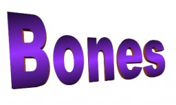 Bones Minecraft Blog Post