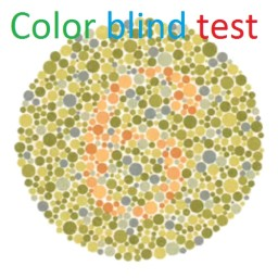 Color blind test, Proffesional. 12 PLATES! Minecraft Project