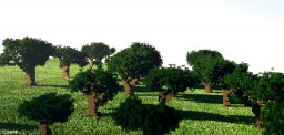 Oak Tree-Pack Minecraft Project