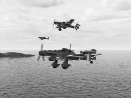 Ju-87 D5 Stuka (4:1)
