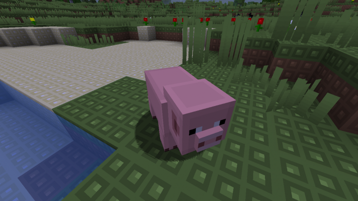 A Pinky Pig