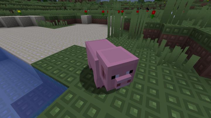 A Pinky Pig