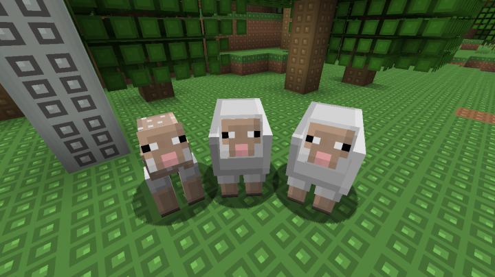 Annoying Sheep