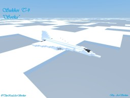 Sukhoi T-4 Minecraft Map & Project