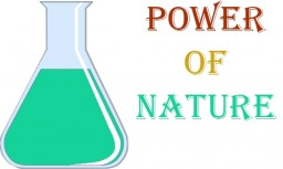 Power Of Nature Minecraft Map & Project