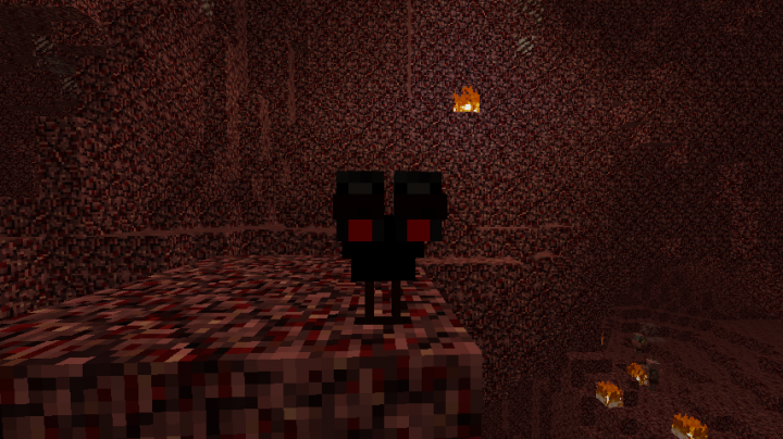Wither Chicken has mutated and got used to harsh Nether Enviroment!