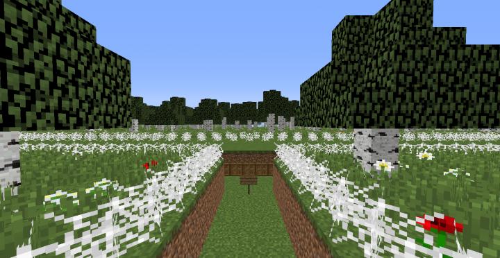 Battleground Forest