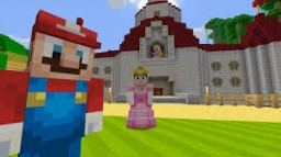 Mario Pack by Raindo Minecraft Texture Pack