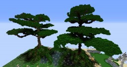 Tree WorldEdit Tree Minecraft Map & Project