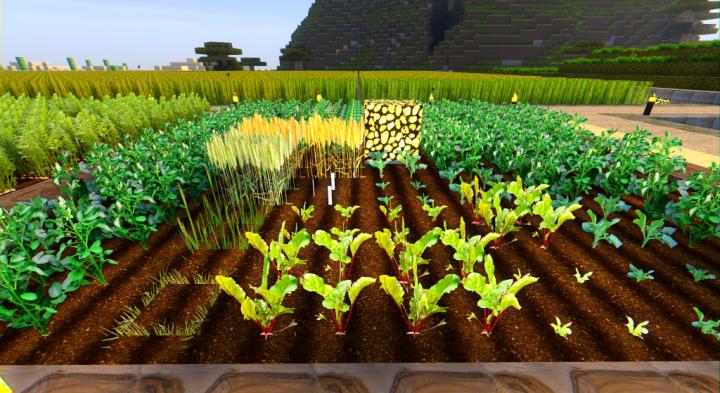 0.95 version plant textures