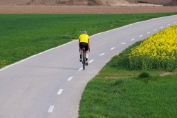 Do Cycling Initiatives Make Cities More Sustainable?
