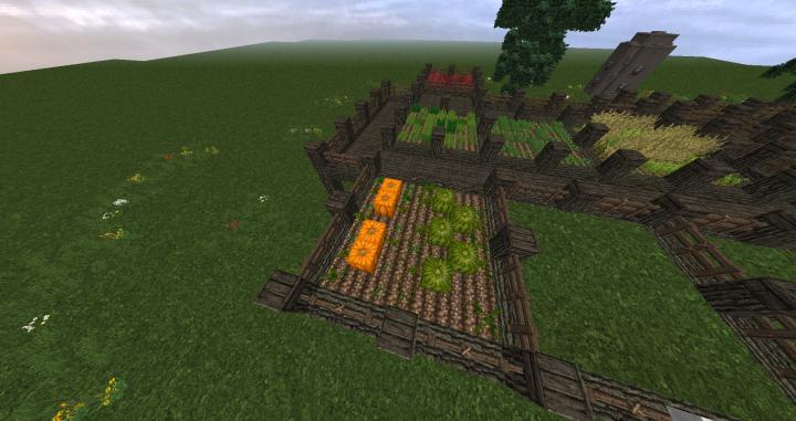 Melon farms