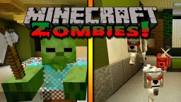Hypixel Zombies
