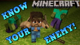 Minecraft: KNOW YOUR ENEMY! ToroHealth Damage Indicators Mod Showcase! Minecraft Blog Post