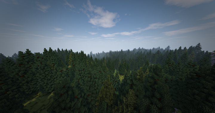 A thick forest, based off the black forest in Germany