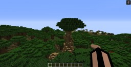 Notch's Tree Minecraft Map & Project