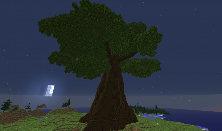 how to grow dark oak trees in minecraft