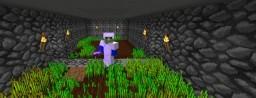 Nerdcraft Minecraft Server