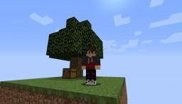 SKY ISLAND Minecraft Project