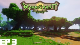 The Nivla Forest Minecraft Project