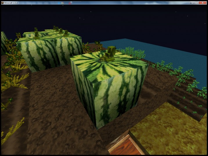 Melon models with 3D stem tops