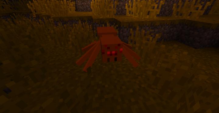 Spider!!!!!!!!!!!