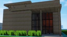 Modern birch house Minecraft Project