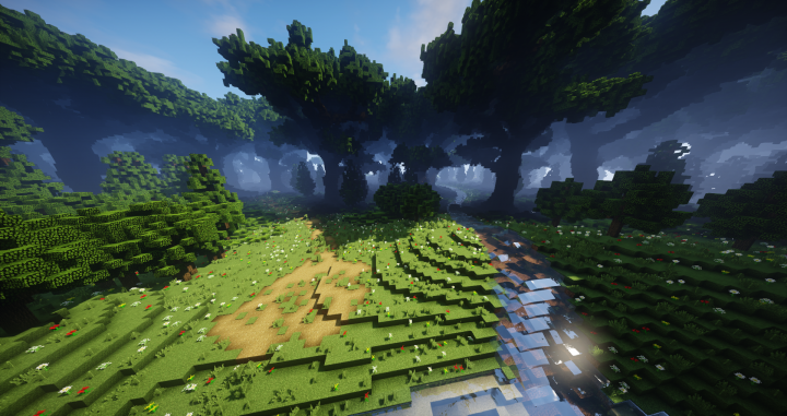 Enchanted Elven Forest