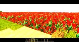 Beautiful Sunshine Town Minecraft Project