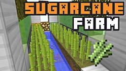 PRACTICAL SUGARCANE FARMS! Minecraft Blog Post