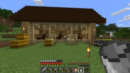 Stable Minecraft Map & Project