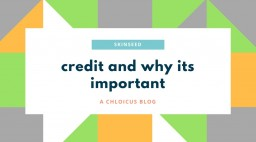 Credit & Why It's Important Minecraft Blog Post